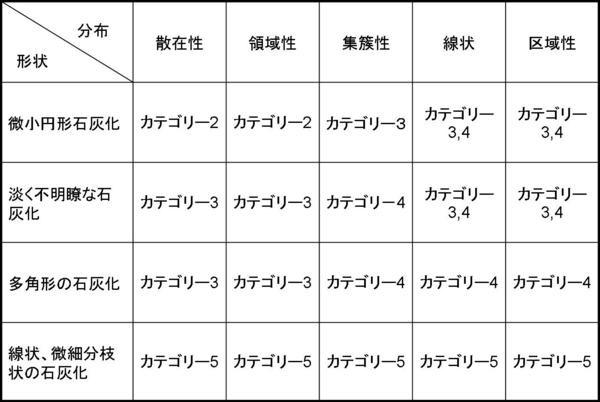 石灰化カテゴリー分類