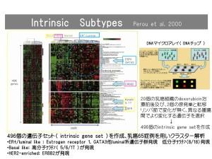 subtype-1